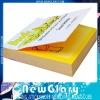 2010 Colorful Memo Stick note notepad NG-BJ14