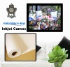 430gsm Heavy Cotton Canvas & Canvas Wall Art for Wide format printing