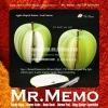 Apple Memo Pad with Die-cut shape