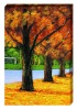 Autumn Scenery Canvas Painting
