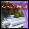 Eco-solvent Polyester Artist Canvas