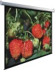 Multimedia equipment Advance Electric Projection Screen