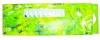 Oil Color/Oil Paint(18 Color 6ML Window Suspensible Box Packed Set)