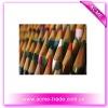 School colored pencil
