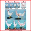 chicken anatomical structure model with base(DWM0002)