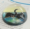 color printed crystal paper weight