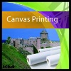 guaranteed 100% printed canvas fabric