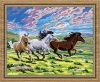 horse painting by number kits for wholesale (40*50cm)
