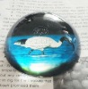 newly printed crystal glass paperweight