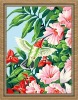 oil painting by number kits for wholesale (40*50cm)