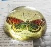utility printed crystal glass paperweight